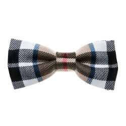 Bow Tie in Thomson Camel Tartan